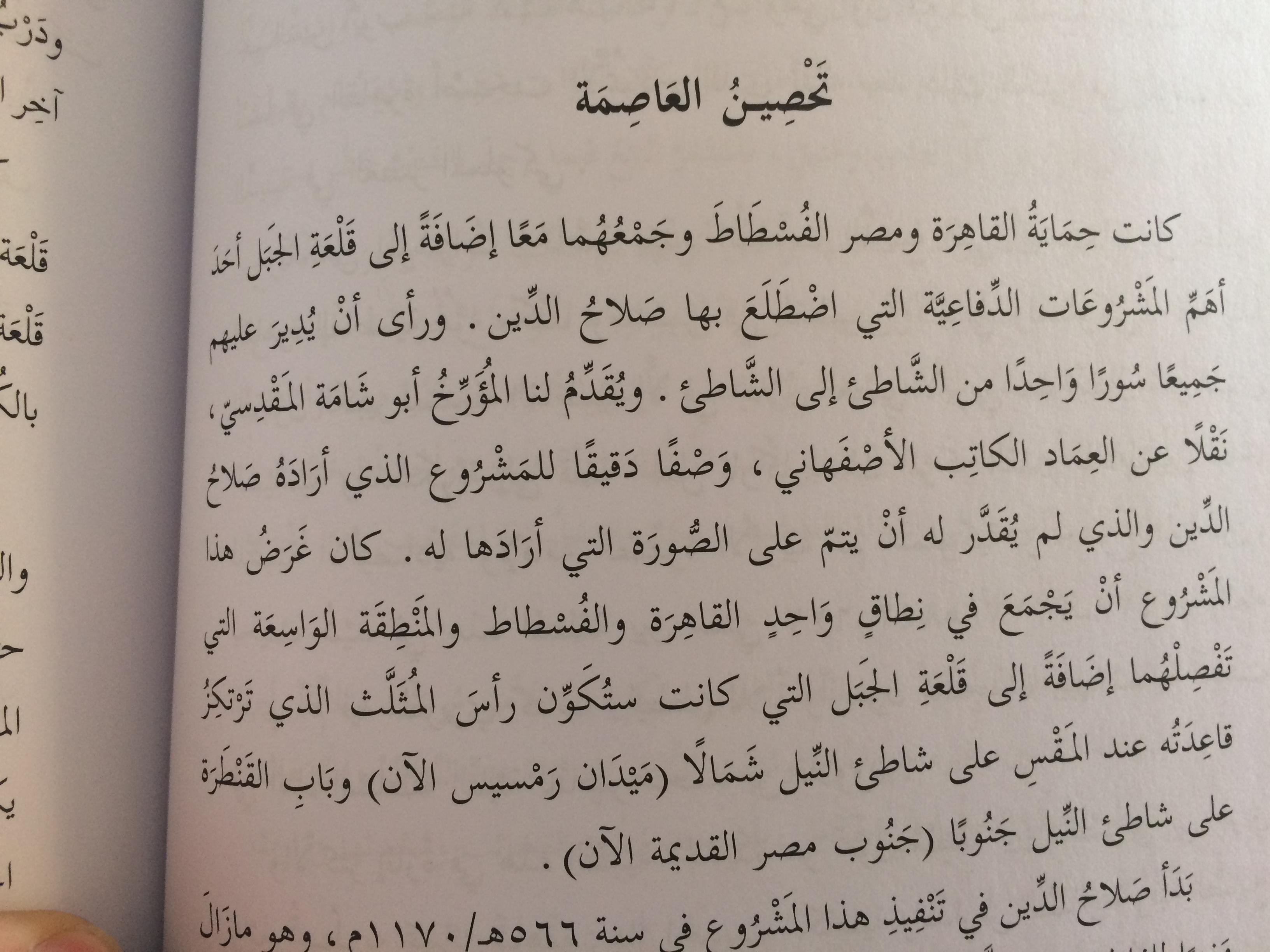 القاهرة في عصر الأيوبيين